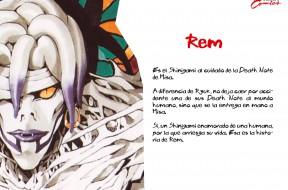 REM-FB